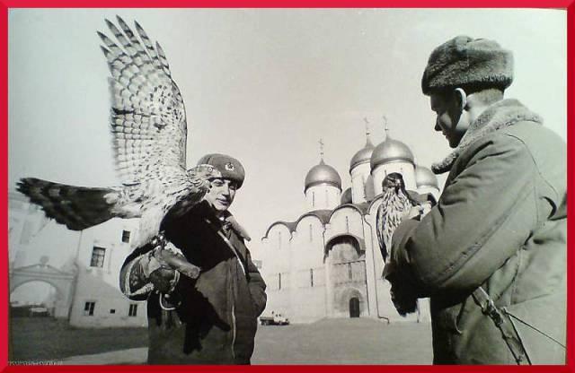 Dwaj rosyjscy żołnierze z sokołami  - obrońcami Kremla