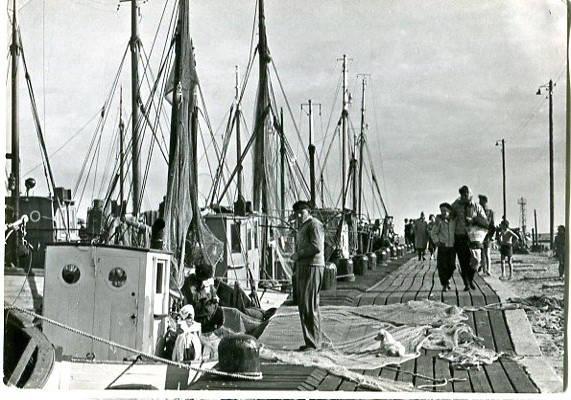 Jastarnia, Port Rybacki, pocztówka fotograficzna RUCH, fot. J. Siudecki