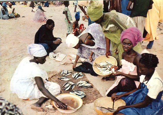 Editions HOA-QUI, Afrique en Couleurs, Targ rybny, Marchandes de poissons