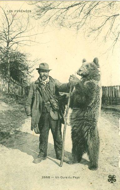 demonstratorzy niedźwiedzi - montreurs d'ours