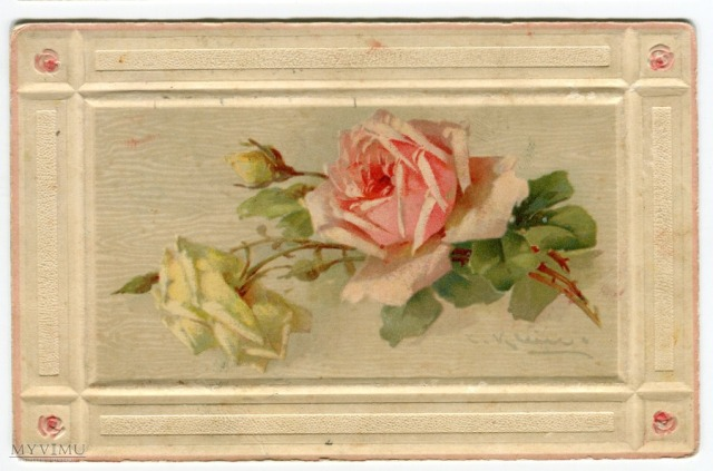 Róża Roses Catharina Klein Stara Pocztówka Vintage Postcard (1)