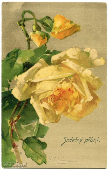 Róża Roses Catharina Klein Stara Pocztówka Vintage Postcard (10)