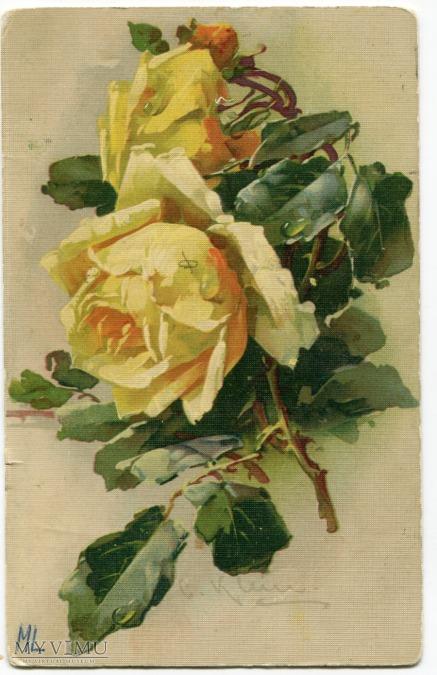 Róża Roses Catharina Klein Stara Pocztówka Vintage Postcard (11)