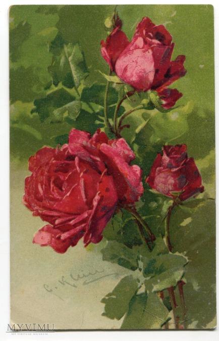Róża Roses Catharina Klein Stara Pocztówka Vintage Postcard (12)