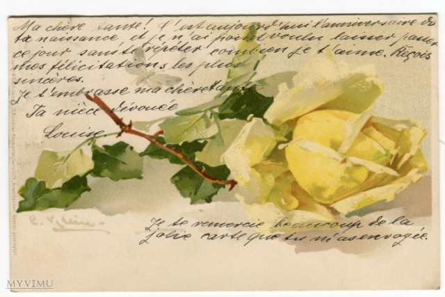Róża Roses Catharina Klein Stara Pocztówka Vintage Postcard (2)