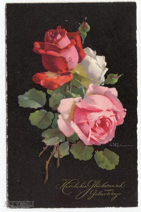 Róża Roses Catharina Klein Stara Pocztówka Vintage Postcard (4)