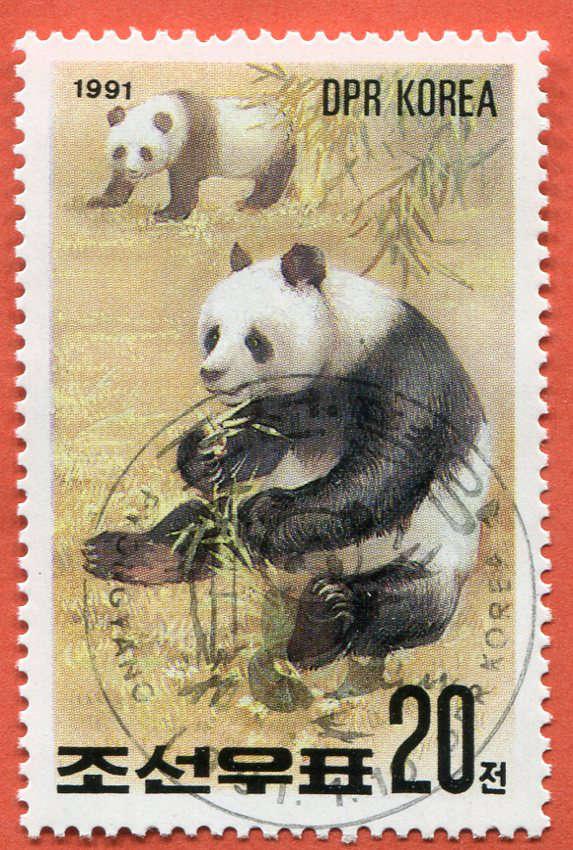 DPR Panda 195