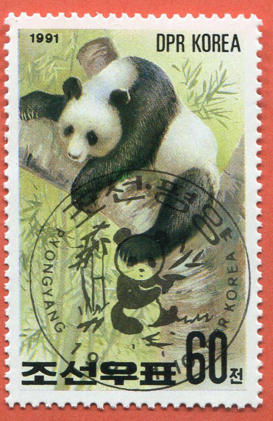 DPR Panda 196