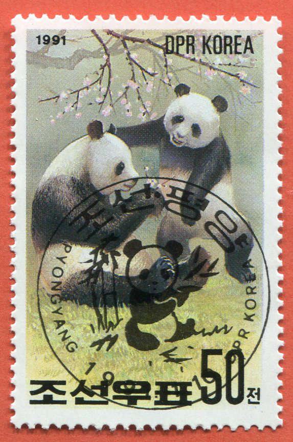 DPR Panda 197