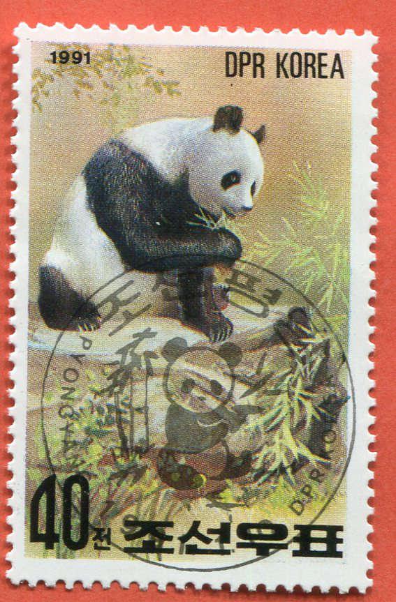 DPR Panda 198