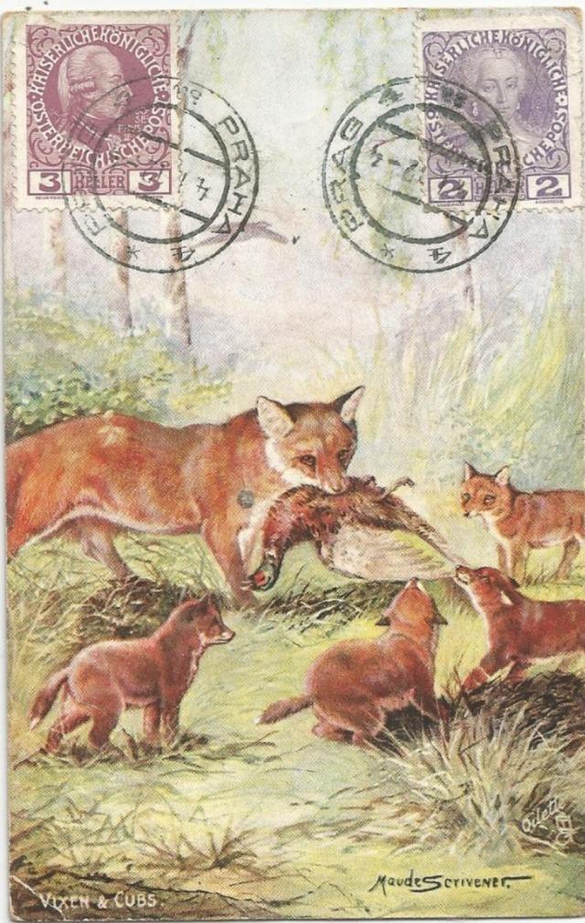 maude-serivener-c-1910-raphael-tuck-lisica-z-mlodymi