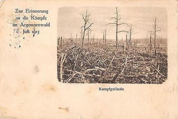 Pole bitwy, na pamiątkę walk stoczonych w Lesie Argońskim, 13 lipca 1915
